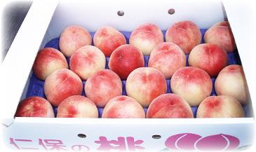 桃の直販:白鳳